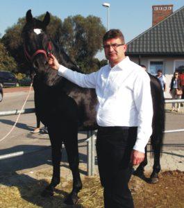 Były burmistrz chce targów końskich, urząd miejski organizatorem niebędzie